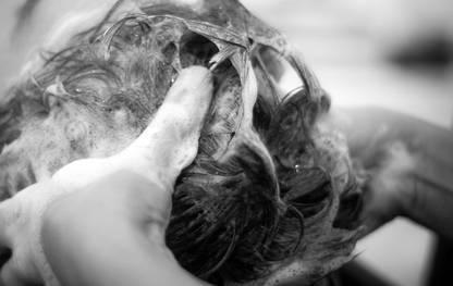 shampoo voor krullen